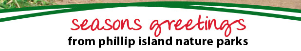 seasons greetings from phillip island nature parks